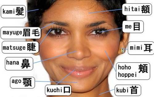 partes do rosto em japonês
