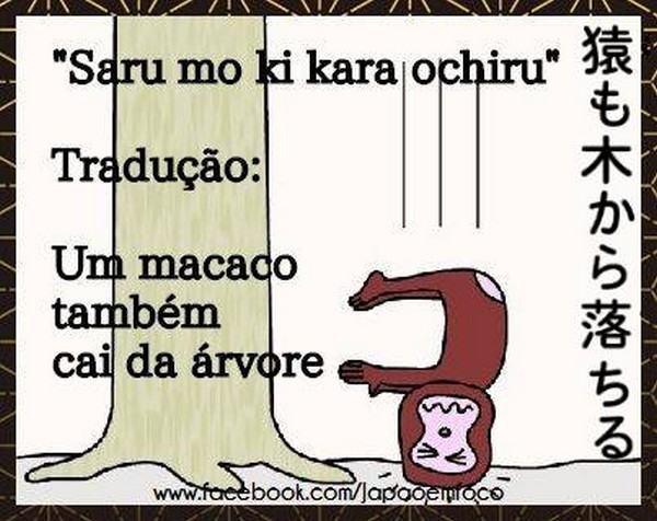 proverbio-japones-macaco