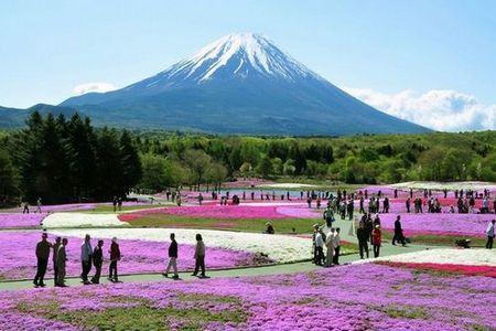 Monte Fuji Parque Nacional Fuji-Hakone-Izu
