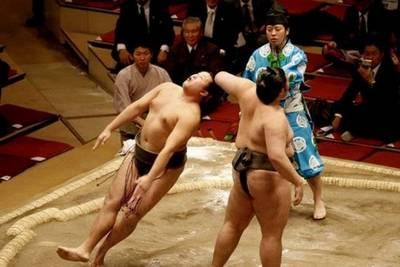 super-sumo