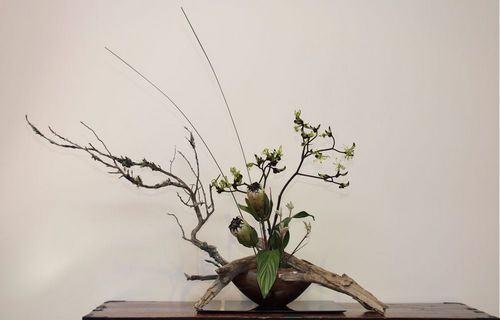 Curiosidades sobre o Ikebana