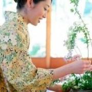 Ikebana Moderno