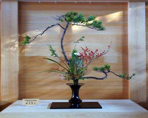 Resultado de imagem para imagens de ikebanas de equilíbrio