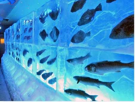 Kori no Suizokukan - Aquário congelado no Japão