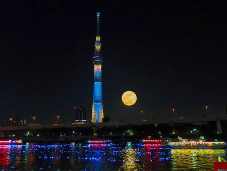 Tokyo Hotaru Festival tokyo luzes led lua cheia