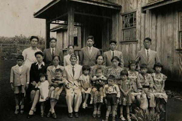 imigracão japonesa no Brasil