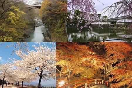 Atrações em Shibukawa