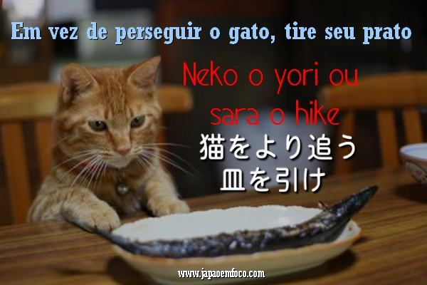 proverbio-japones-9
