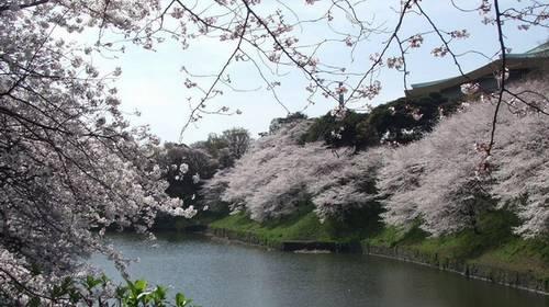 Parque Natural Ohirasan em Tochigi