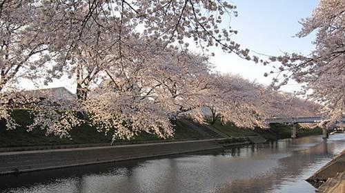 Rio Shin-Sakai Kagamigahara Gifu