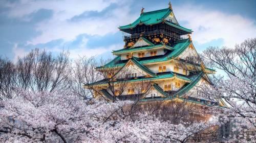 Castelo de Osaka, província de Osaka
