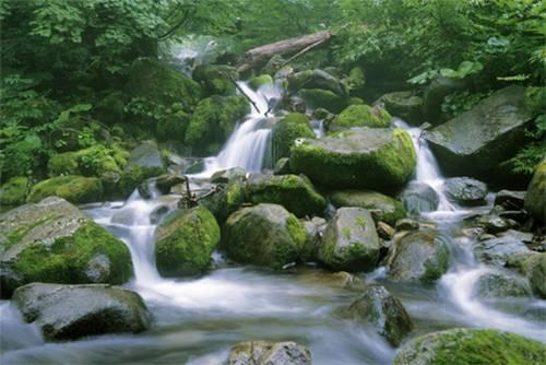 Shirakami-Sanchi Província de Akita e Aomori