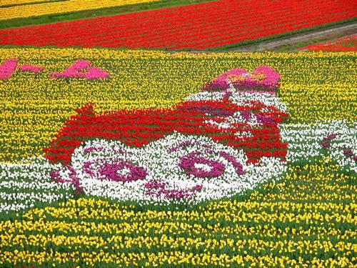 Tema: Astro Boy no Tantou Tulip Festival 2013