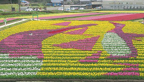 Tantou Tulip Festival de 2008, Tema: Pinguim