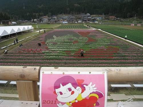 Tantou Tulip Festival de 2011, Tema Peco-chan, mascote da Fujiya