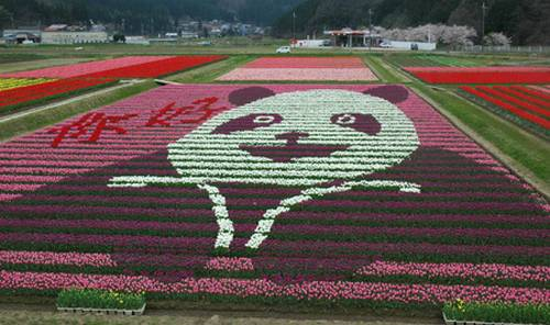 Tantou Tulip Festival de 2009, tema Panda