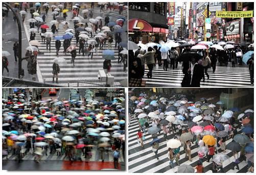 Tsuyu, estação chuvosa no Japão fotos