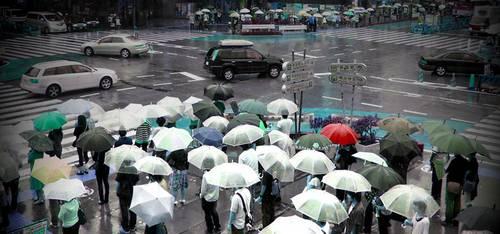 guarda-chuva transparente no Japão