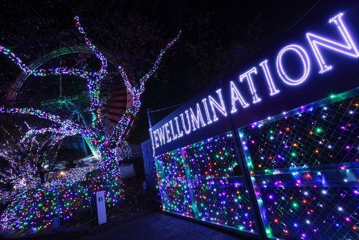 Yomiuri Land Jewellluimination