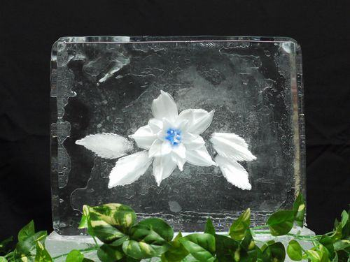 Floral Ice 4