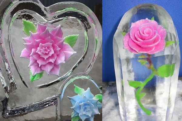flores no gelo