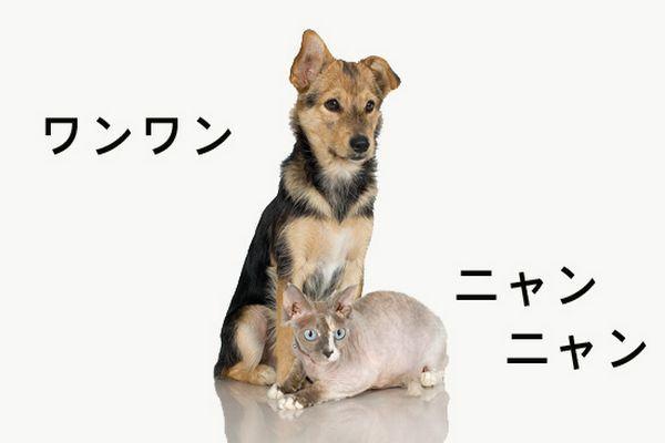 Onomatopeias na Língua Japonesa