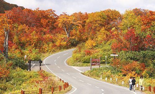 estrada entre Goshogake Onsen e Onuma Pond