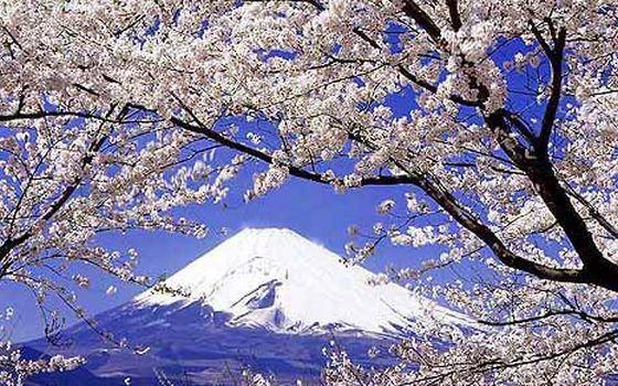 Os melhores locais para apreciar o Monte Fuji