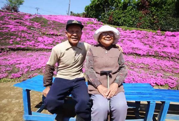 Japonês planta milhares de flores perfumadas para fazer sua esposa voltar a sorrir