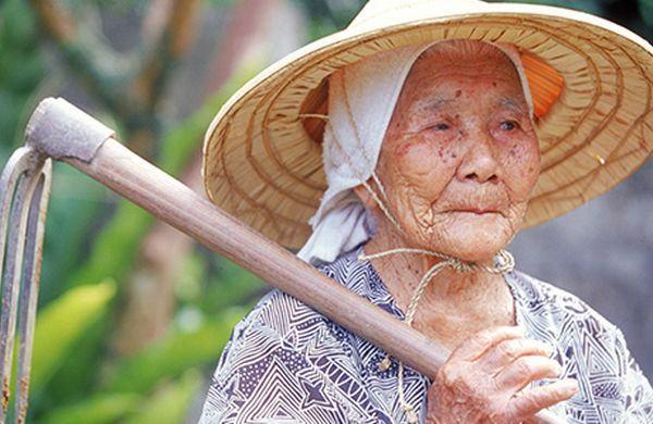 Os 100 Sobrenomes Mais Comuns de Okinawa