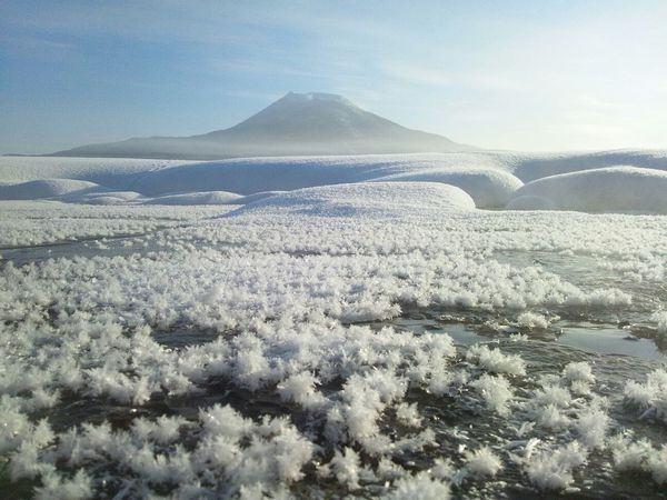As delicadas flores de gelo de Hokkaido