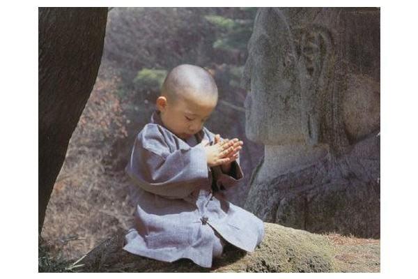 Resultado de imagem para caminho zen do coração