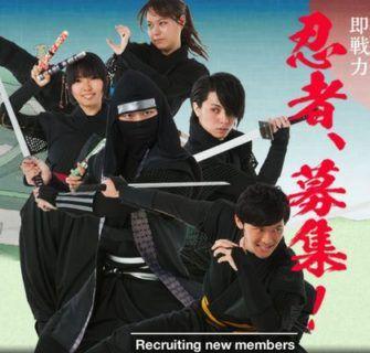 Procura-se ninjas em Aichi ken