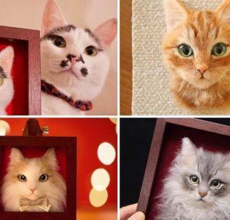 Retratos Realistas 3D de Gatos Feitos Com Lã Feltrada by Wakuneco