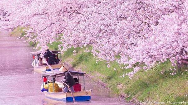 Hanaikada em Kyoto