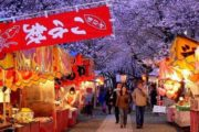 Os cinco melhores festivais de sakura em Tóquio