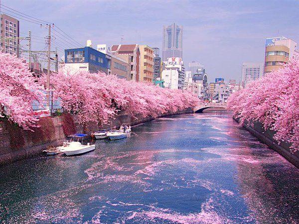 Rio Ookagawa, em Yokohama