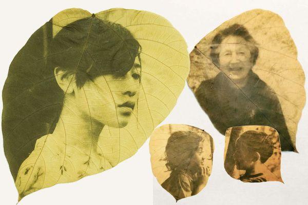 Retratos em folhas por Hiro Chiba
