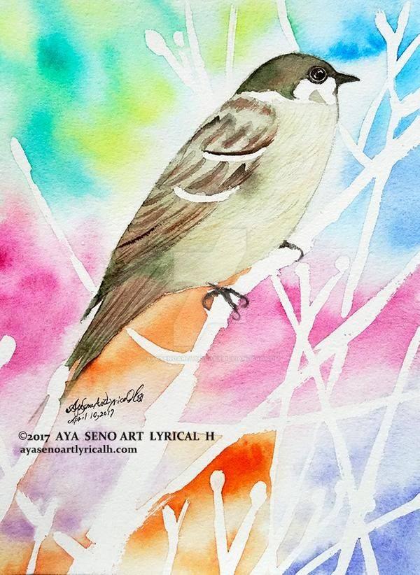 As asas do pardal-montês
